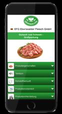 Eberswalder Mobile